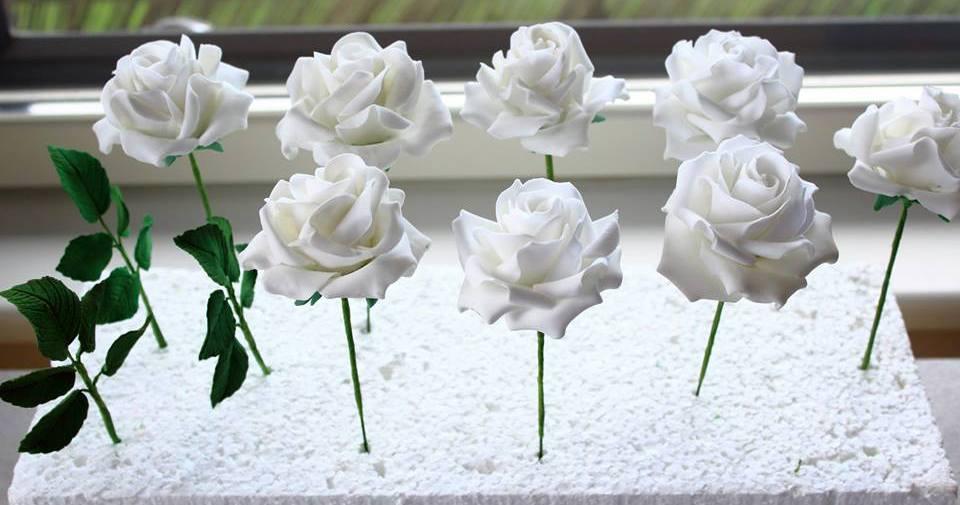 helena roosid